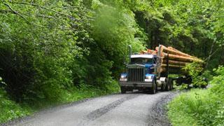Logging_Road_Radio_VHF